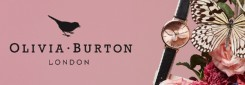 O_BURTON_BANDEAU_WEB